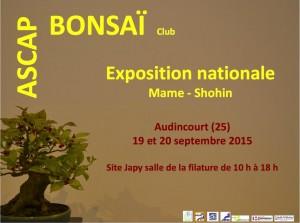 Exposition Shohin 2015 @ Audincourt | Franche-Comté | France