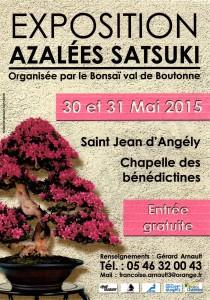 Exposition Azalées à St Jean d'Angély @ Saint-Jean-d'Angély | Poitou-Charentes | France