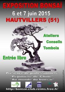 Exposition à Hautvillers (près de Reims) @ Hautvillers | Champagne-Ardenne | France